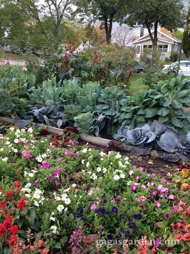 Bryant Community Garden Project