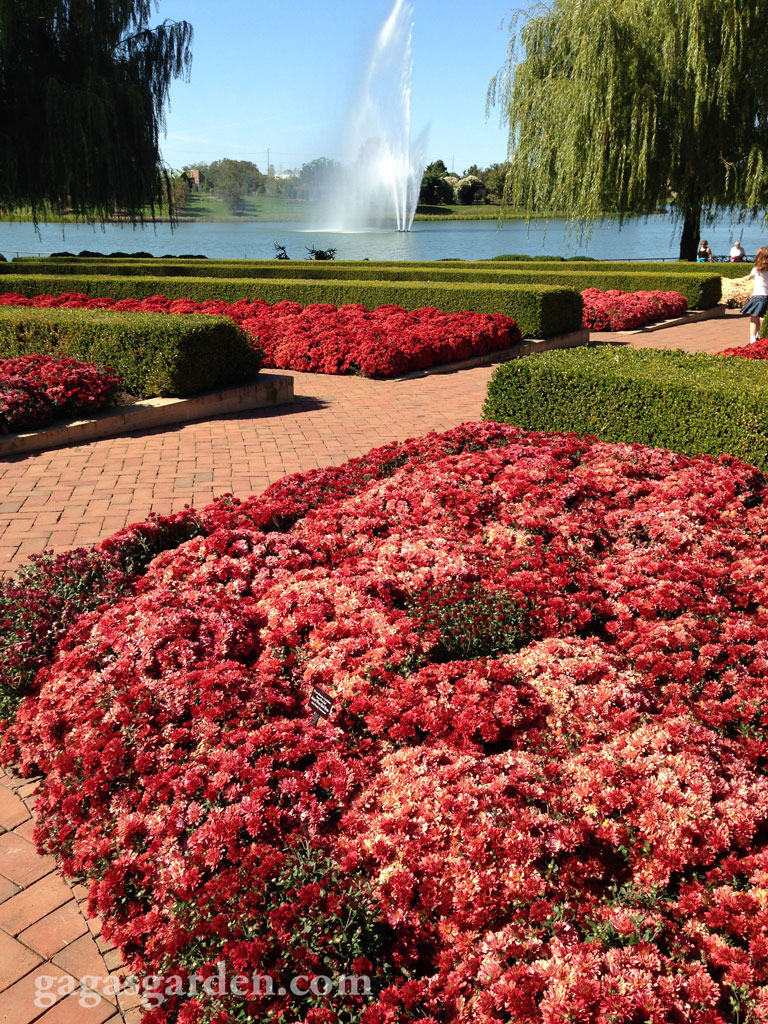 Chicago Botanic Gardens October 2, 2013