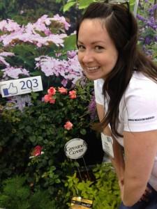 Shannon Springer Up Close with New Proven Winner shrub rose 'Livable La Vida'