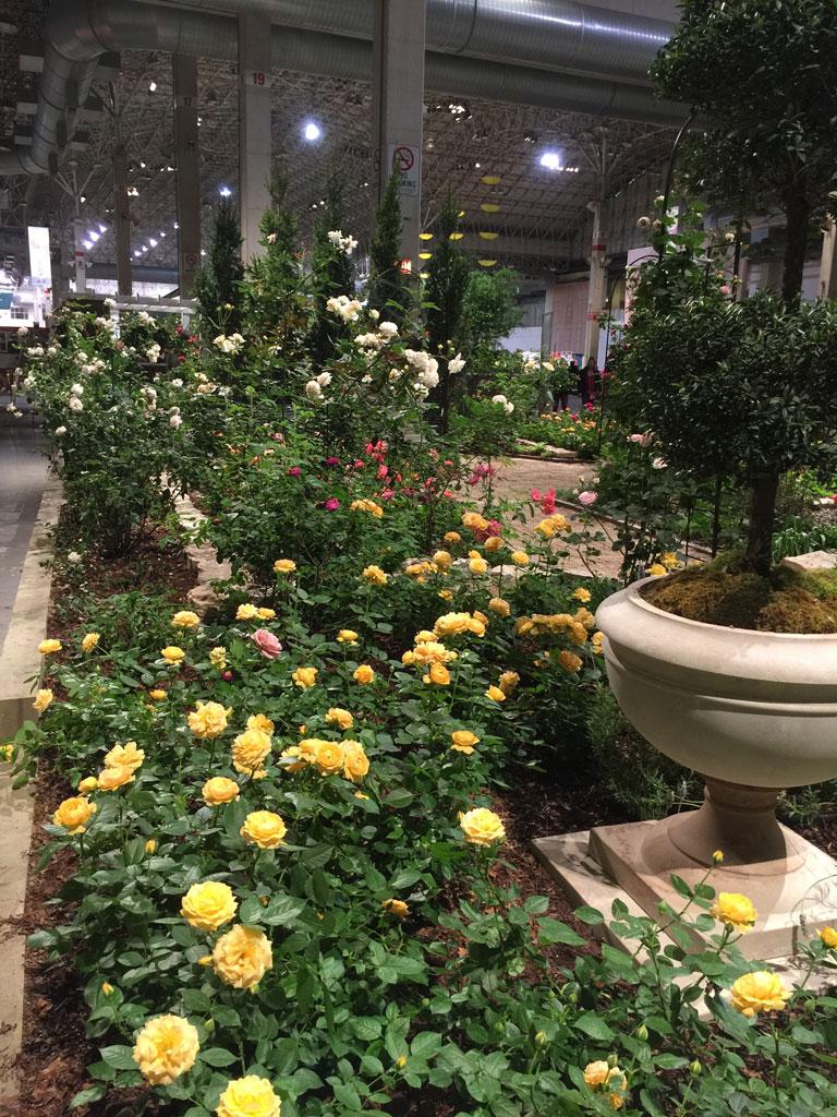 The 'Classic Rose Garden' at the Chicago Flower & Garden Show