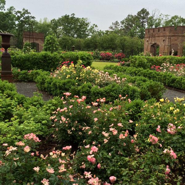 P. Allen Smith Rose Garden