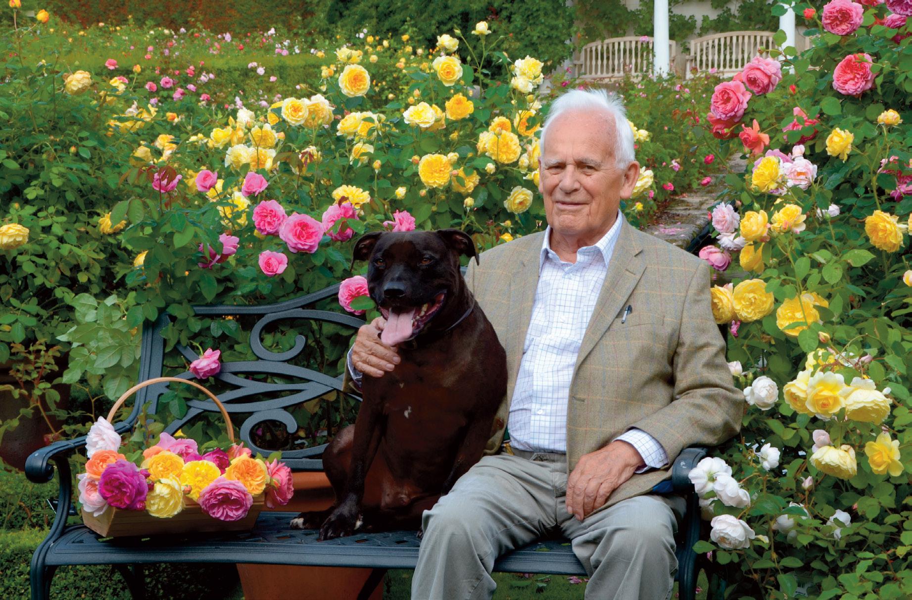 David C. H. Austin & Bertie