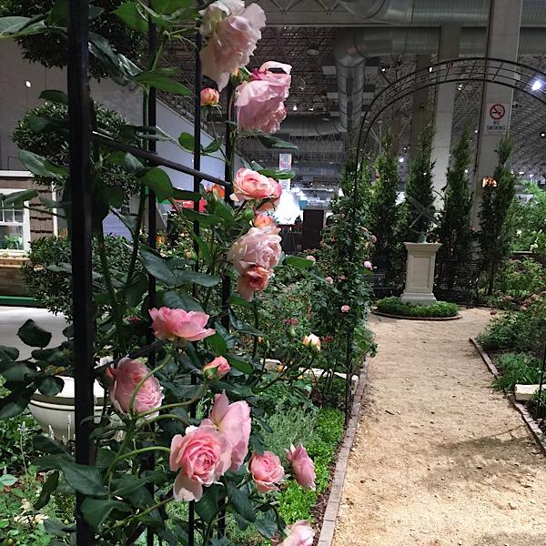 Chicago Flower & Garden Rose Garden Walkway