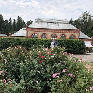 Witherspoon Rose sponsors of Biltmore Rose Trials in the Rose Garden