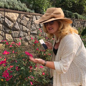 Julie Ashman judging roses at Biltmore Rose Trials