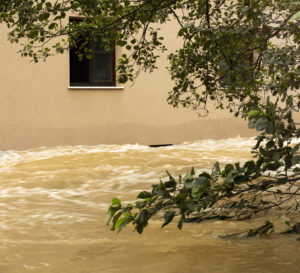 14201561 Flooding