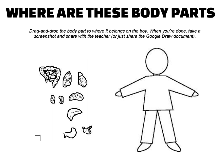 where-are-body-parts-google-draw