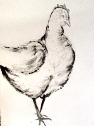 Hampshire Farm Chicken
