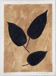 Sanskriti Leaves, White Fig