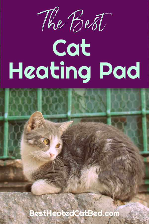 Best Cat Heating Pad by BestHeatedCatBed.com