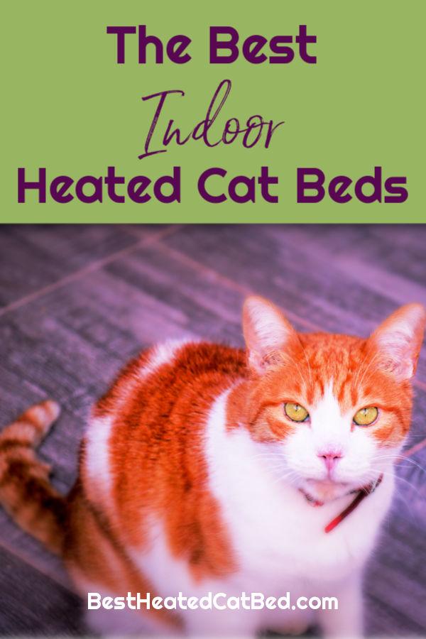 Best Heated Cat Beds Indoor by BestHeatedCatBed.com