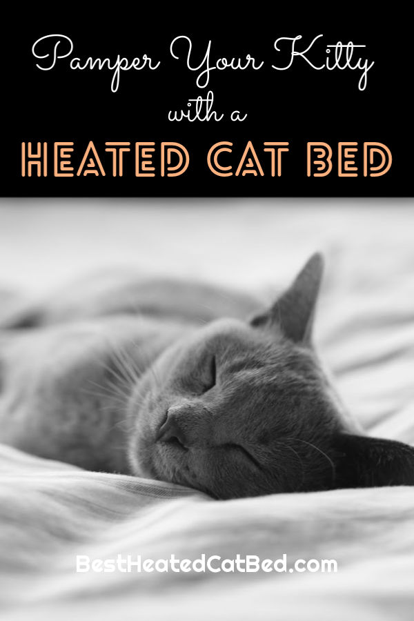 Pamper Your Kitty Heated Cat Bed by BestHeatedCatBed.com