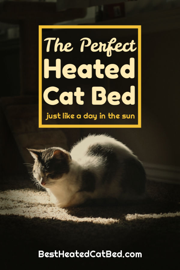 Perfect Heated Cat Bed by BestHeatedCatBed.com