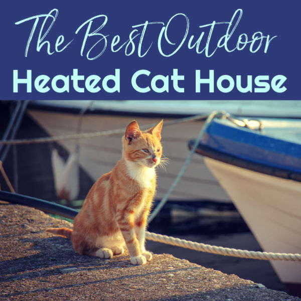 The Best Outdoor Heated Cat House by BestHeatedCatBed.com