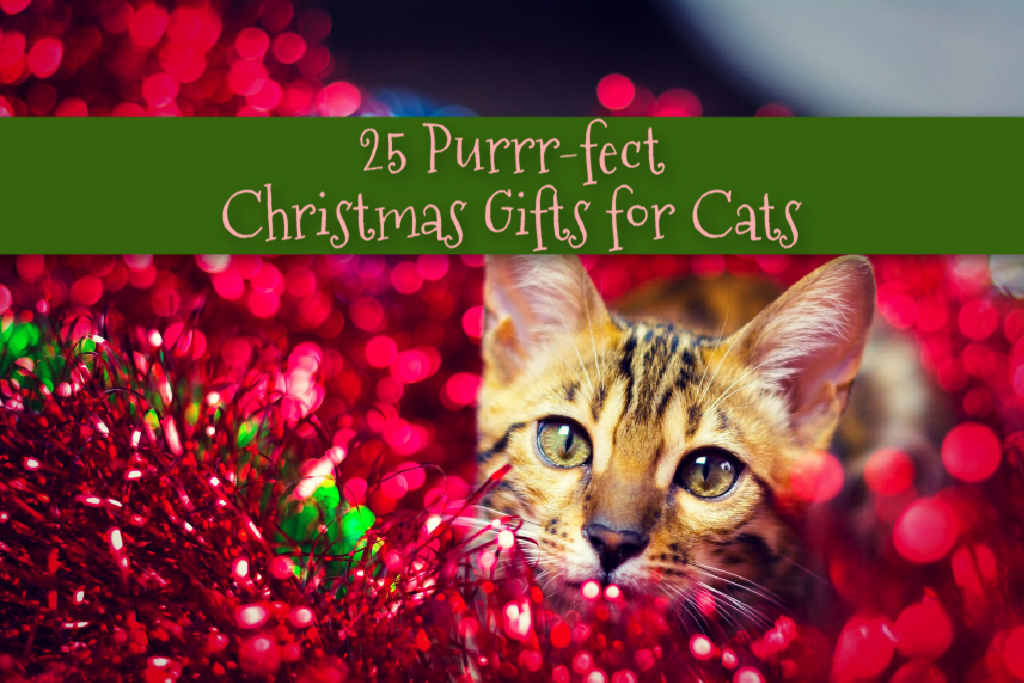 25 Perfect Christmas Gifts for Cats by BestHeatedCatBed.com