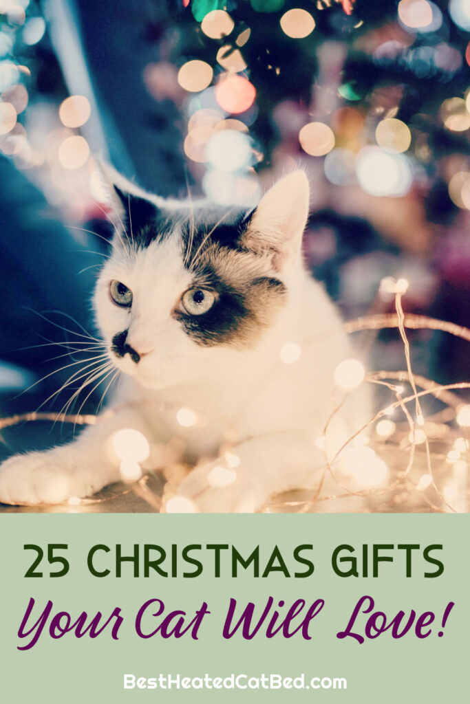 Christmas Gifts Cats Love by BestHeatedCatBed.com