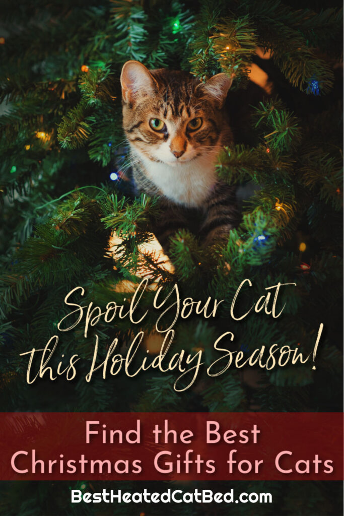 Find the Best Christmas Gifts for Cats by BestHeatedCatBed.com