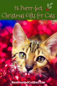 Perfect Christmas Gifts for Cats by BestHeatedCatBed.com