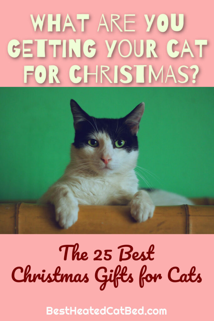 The 25 Best Christmas Gifts For Cats by BestHeatedCatBed.com