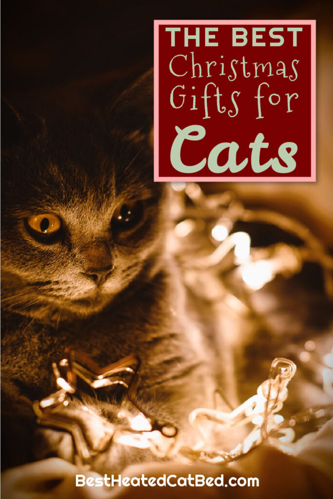 The Best Christmas Gifts for Cats by BestHeatedCatBed.com
