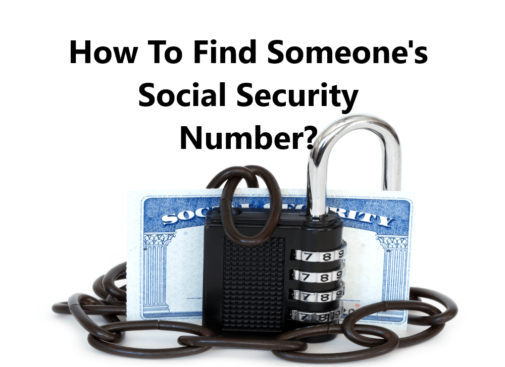 What is a bulk social security number lookup?