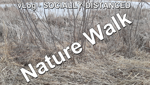 vLog socially distanced nature walk thumb