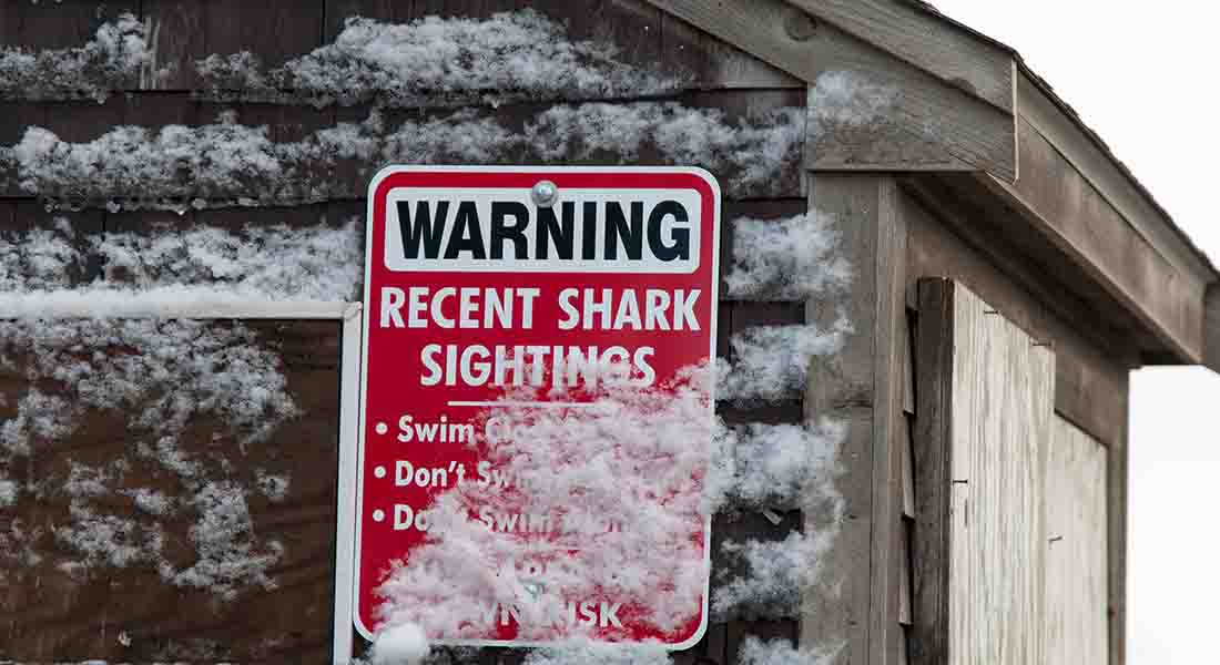 Sharking sighting warning sign on a wooden building covered in snow