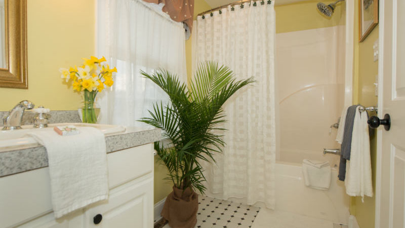 The bathroom of Beach Blossom Room showing a gray countertop with flowers, full tub and shower, and a plant.