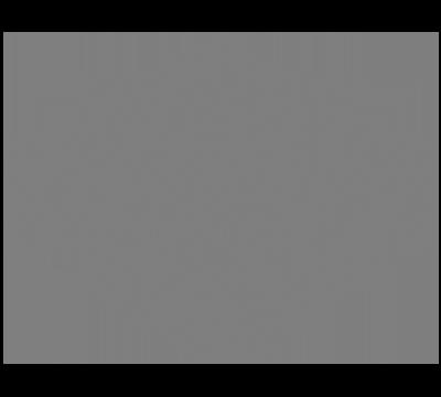 NE Client - Harley-Davidson