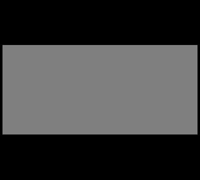 NE Client - The North Face