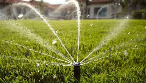 https://secureservercdn.net/198.71.233.254/x7j.a99.myftpupload.com/wp-content/uploads/2020/02/How-to-Install-Water-Sprinkler-System-1.jpg?time=1606968433