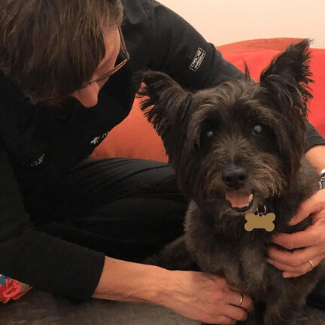 All About Dogs Acupressure
