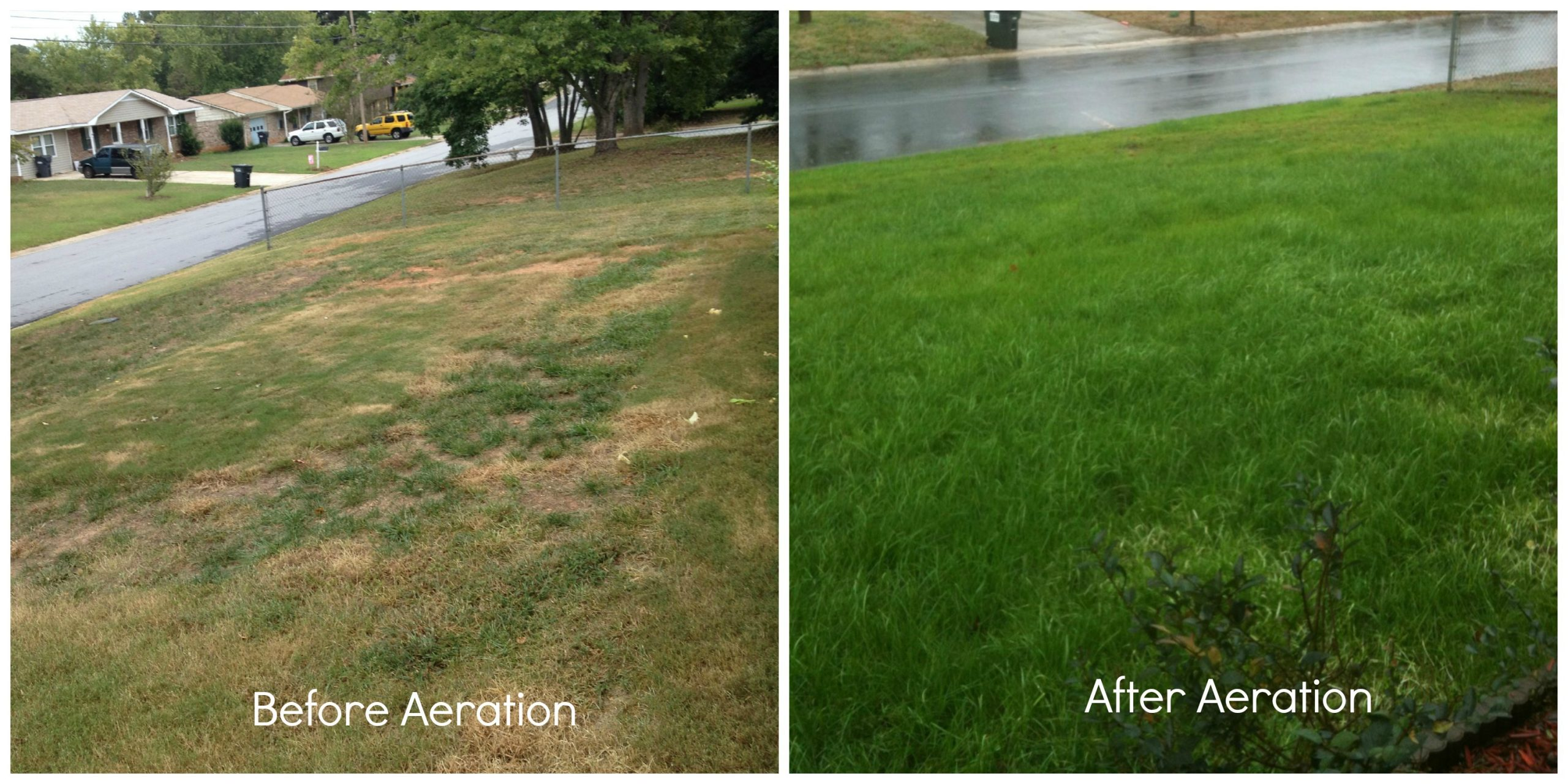 Aeration | Blog | Lawn & Pest Control Xperts