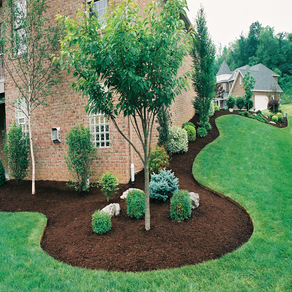 Landscaping | Lawn & Pest Control Xperts