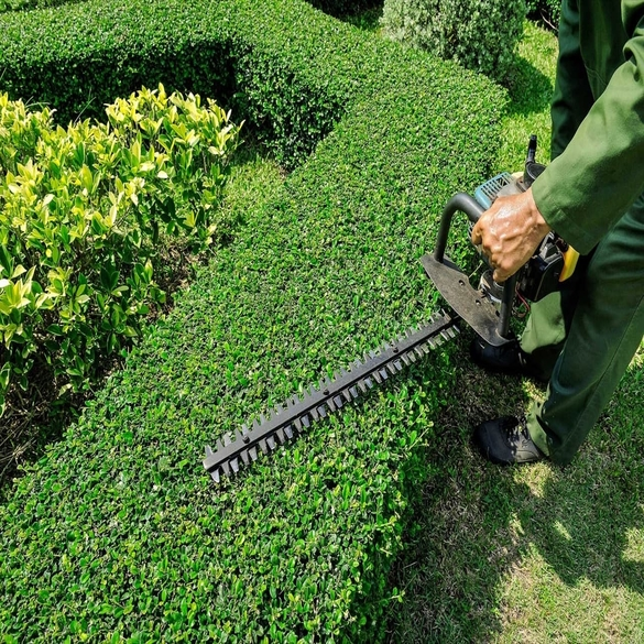 Pruning | Lawn & Pest Control Xperts