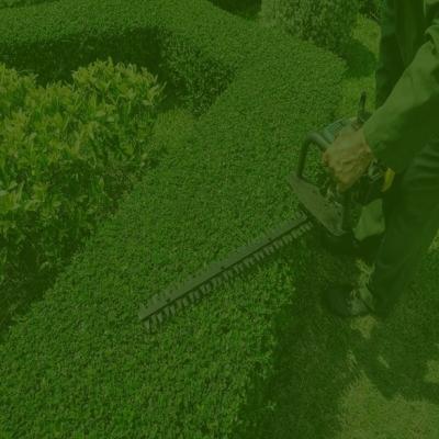 Pruning Service