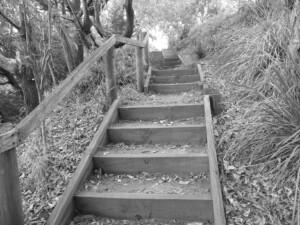 The Hidden Path