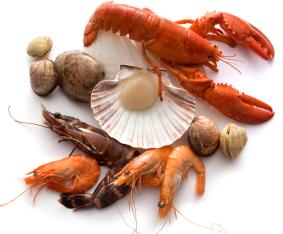 shellfish, superfood, lobster, crab, clams