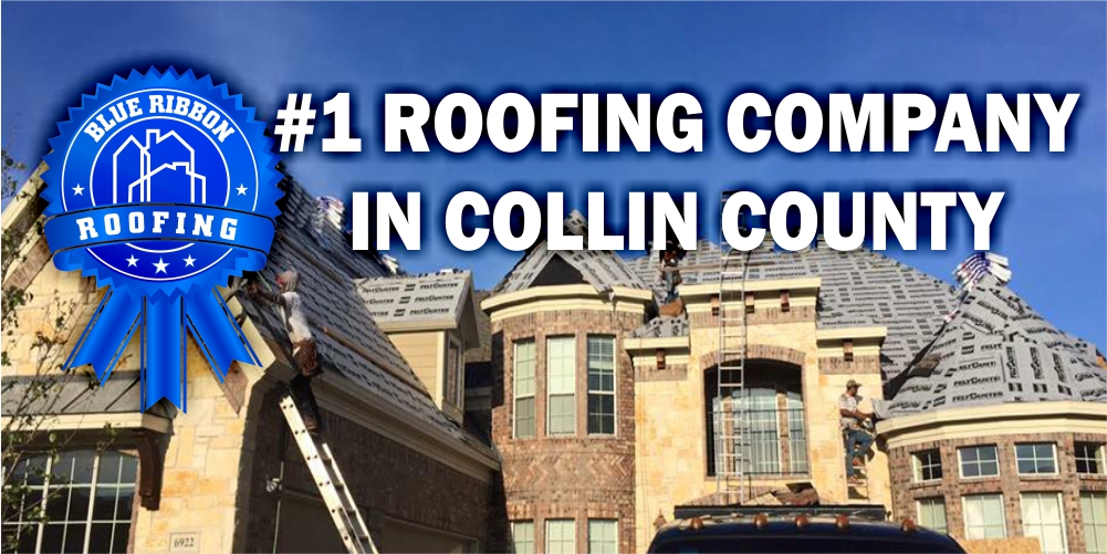 Blue Ribbon Roofing_#1 Roofing Company_500X1100