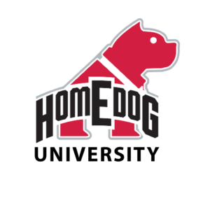 Homedog University dog training program at Homedog Resort & Daycare in downtown Columbus, Ohio