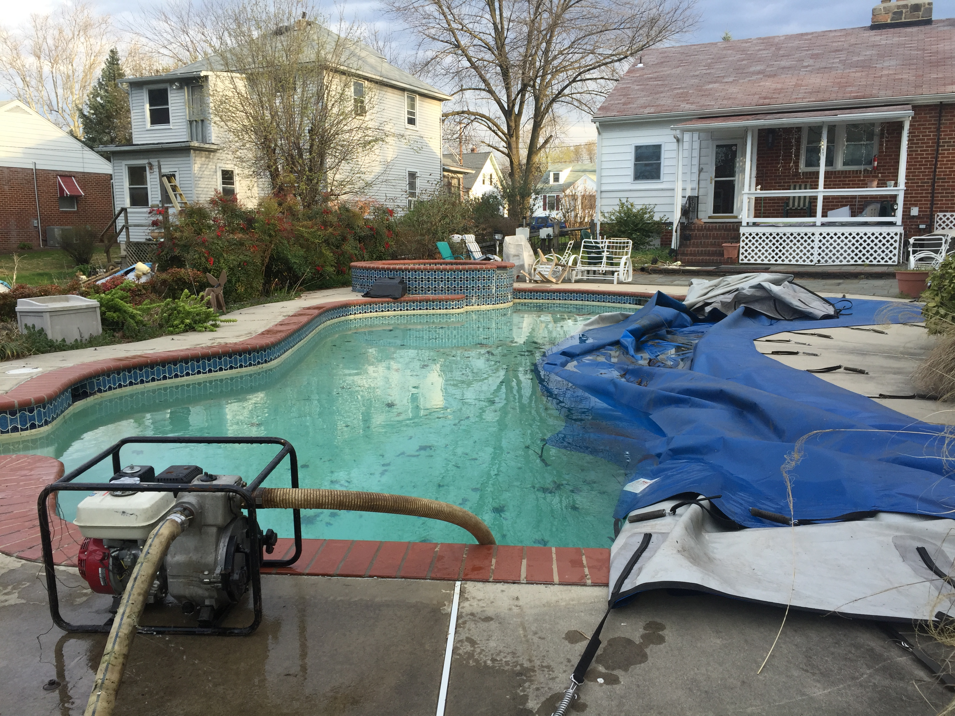 arbutus pool removal 2
