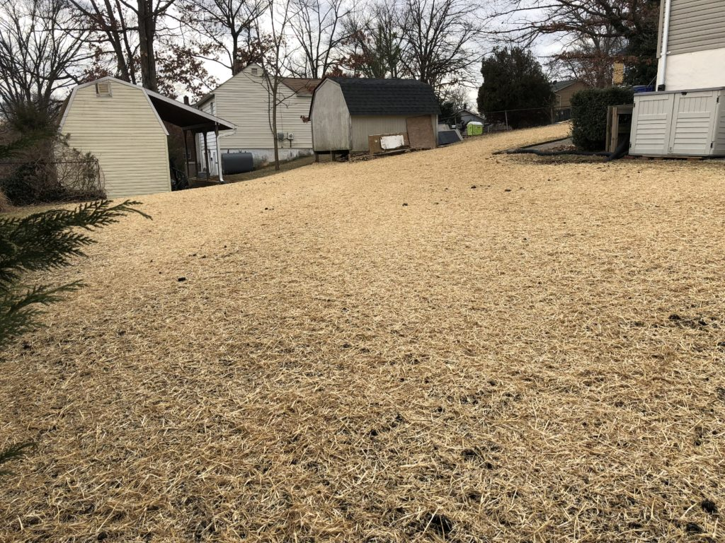 After Concrete Pool Removal in Laurel Maryland