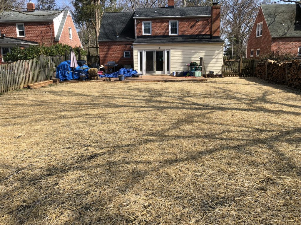 After Vinyl Pool Removal in Pikesville
