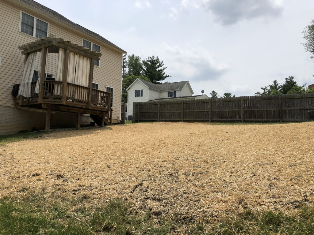 After Above Ground Pool Removal in Elkridge Maryland