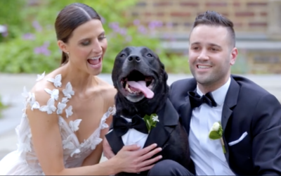 Another Fun Wedding Film by Tweed!