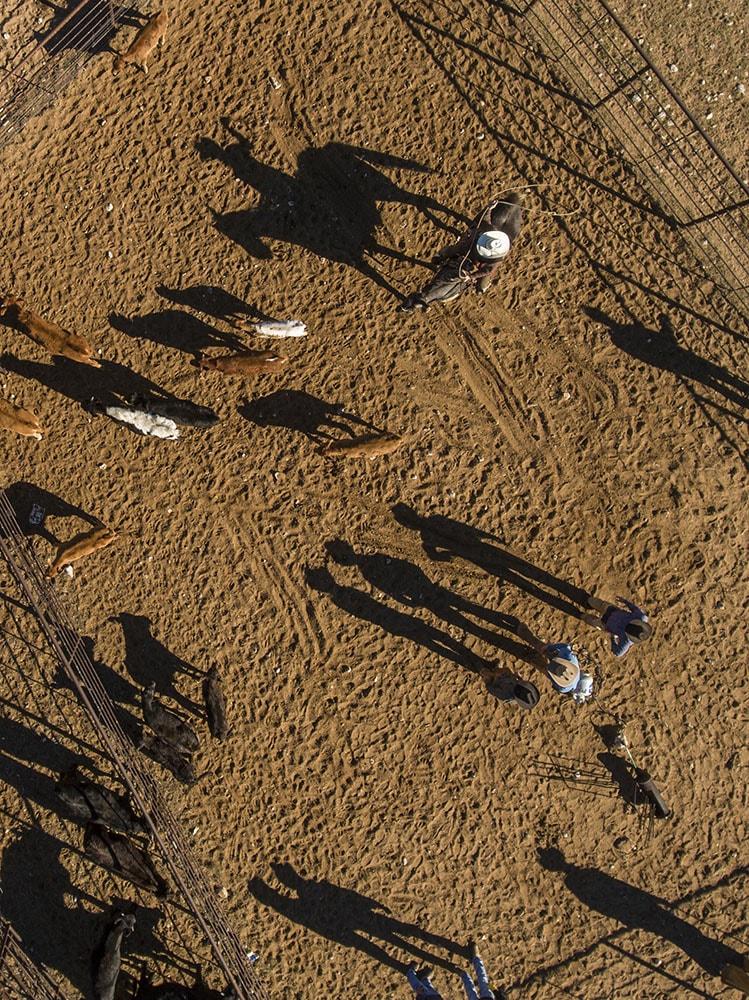 West Texas Cowboy  Drone