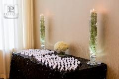 110213-procopio-photography-park-wedding-063