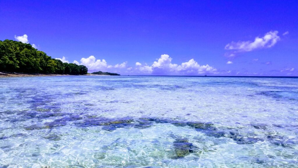 The main reason why Tuvalu is worth a visit - the Conservation Area