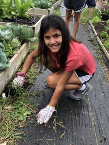 teen volunteering during the summer
