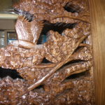 Eagle carved in a panel for glass insert in a custom door made of Walnut.